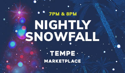 special-event-nightly-snow-fall-snowfall